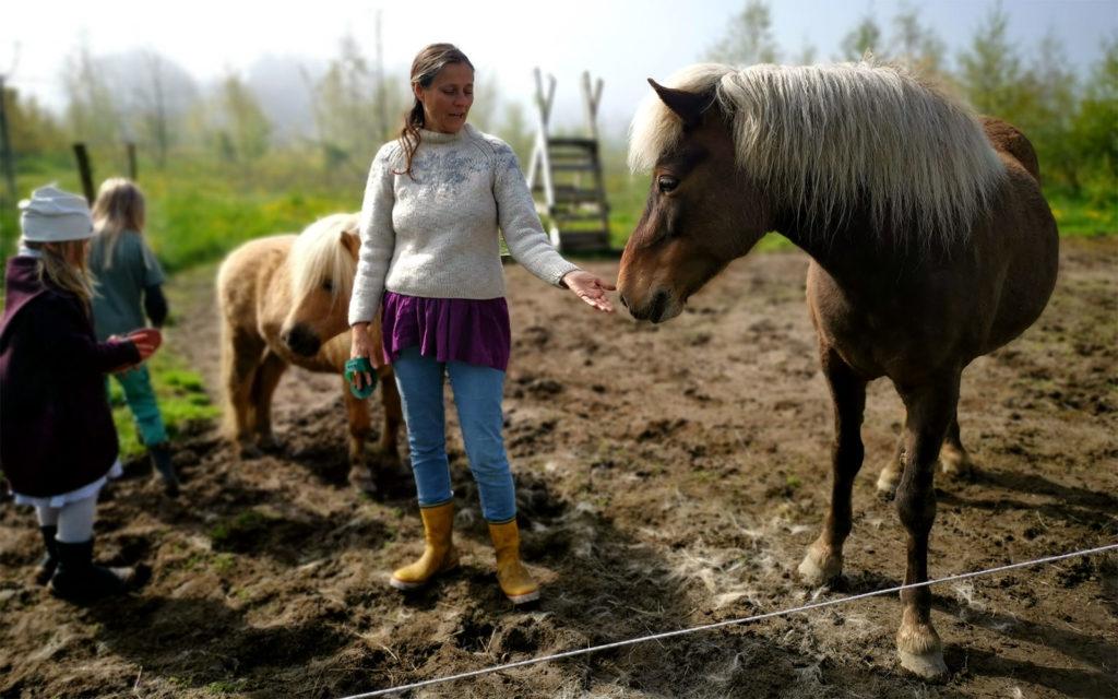 Freilerner-Gemeinschaft auf Bornholm, Eliane zeigt uns die sehr speziellen Bedürfnisse der Pferde.